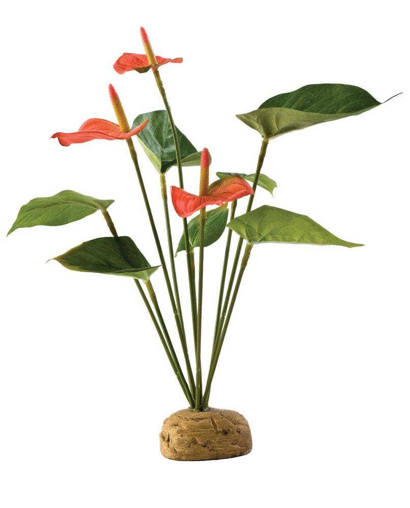 Exo terra Plante de Décoration pour Reptile Anthurium Exoterra PT2992