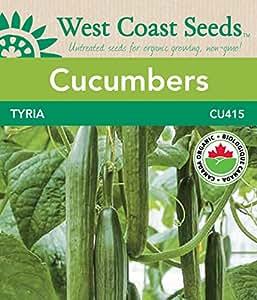 Cucumber Seeds - Tyria F1 Organic