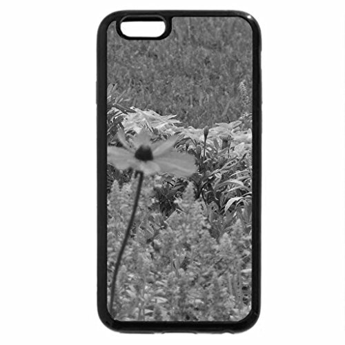 iPhone 6S Case, iPhone 6 Case (Black & White) - Color Of Flowers