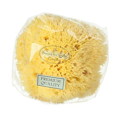 Hydrea London Natural Sea Sponge, 6.5''-7'' (PACK OF 4) by Hydrea London