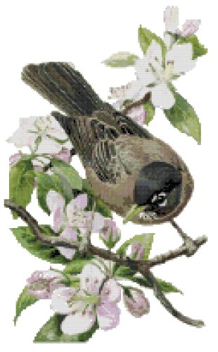 Michigan State Bird (American Robin) and Flower (Apple Blossom) Counted Cross Stitch Pattern