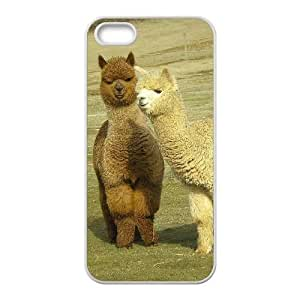 Customized case Of Lama Pacos Hard Case for iPhone 5,5S