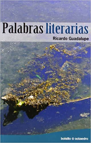 Descargar audiolibros gratis Palabras literarias (Bolsillo Octaedro) PDF ePub MOBI