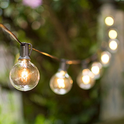 Vaughan Premier Globe String Lights, 2 Inch E12 Bulbs, 100 Foot Black Wire  C7 Strand, Clear   Buy Online In UAE. | Lights For All Occasions Products In  The ...