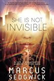 img - for She Is Not Invisible book / textbook / text book