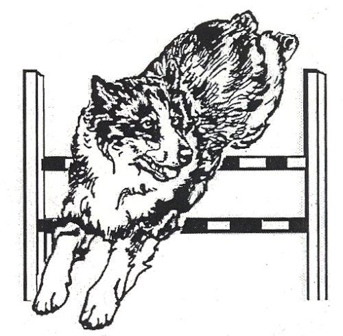 "Dog Rubber Stamp - Australian Shepherd-15G (: 2-1/4"" Wide X 2-1/4"" Tall)"