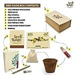 Eco friendly rakhi