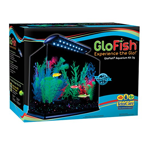 Tetra 29005 glofish aquarium kit 3 gallon import it all for Tetra fish tanks