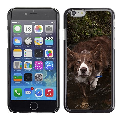 "Premio Sottile Slim Cassa Custodia Case Cover Shell // F00016735 Chien rouge // Apple iPhone 6 6S 6G PLUS 5.5"""