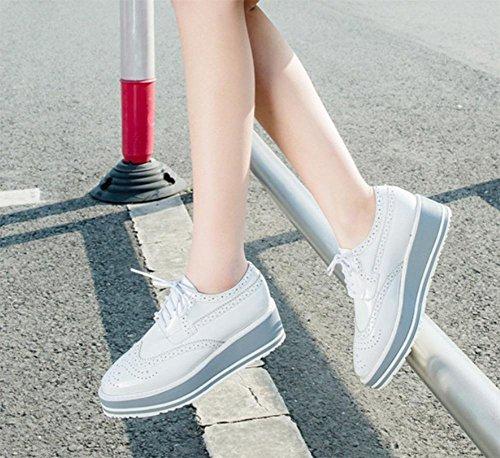 Ms. primavera e scarpe autunno con spessa con le scarpe fondo pesante pizzo scarpe scarpe delle donne , US6.5-7 / EU37 / UK4.5-5 / CN37