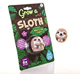 Boxer Gifts Grow a Sloth Toy | Just Add Water