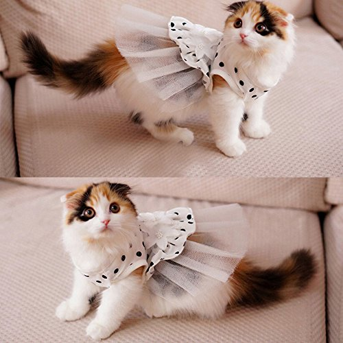 i'Pet Princess Floral Cat Party Bridal Wedding Dress Small Dog Flower Tutu Ball Gown Puppy Dot Skirt Doggy Photo Apparel Stretchy Clothes Mesh Costume for Spring Summer Wear (White, Small) -
