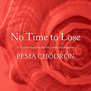 No Time to Lose Audiobook