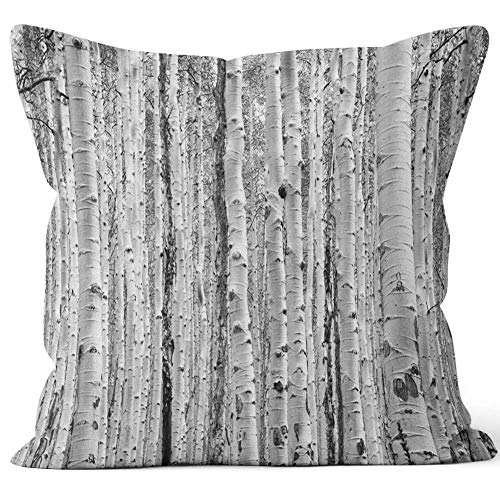 Nine City Black and White Aspen Trees Make a Natural Texture Pattern in Colorado Forest Throw Pillow Cushion Cover,HD Printing Decorative Square Accent Pillow Case,28