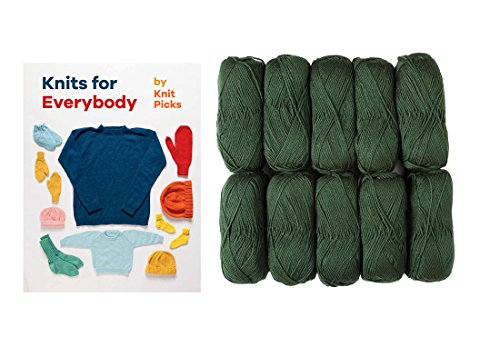 Knit Picks Brava Worsted 100% Premium Acrylic Yarn - 10 pack with Book (Dublin)