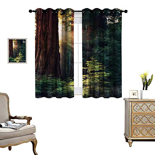 (WinfreyDecor National Parks Thermal Insulating Blackout Curtain Morning Sunlight in Wilderness Yosemite Sierra Nevada United States Nature Patterned Drape for Glass Door W63 x L63 Green Brown)