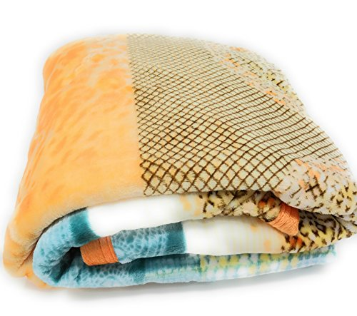 DaDa Bedding Flannel Throw Blanket - Papaya Beach Exotic Warm Fleece - Soft Bright Vibrant Striped Paisley - Multi Colorful Orange & Blue - 66