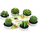 Cactus Tealight Candles, GOMEET Handmade Delicate Succulent Cactus Candles for Birthday Party Wedding Spa Home Decoration, 6 Pcs in Pack.