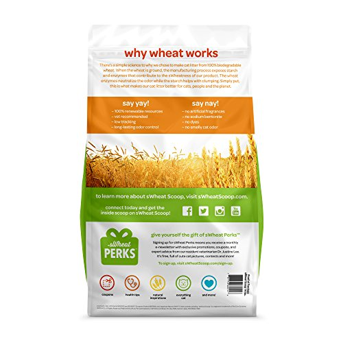 Image of sWheat Scoop Multi-Cat All-Natural Clumping Cat Litter, 14lb Bag
