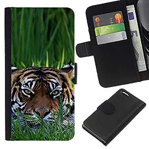 Apple iPhone 5C - Dibujo PU billetera de cuero Funda Case Caso de la piel de la bolsa protectora Para (Clever Tiger)