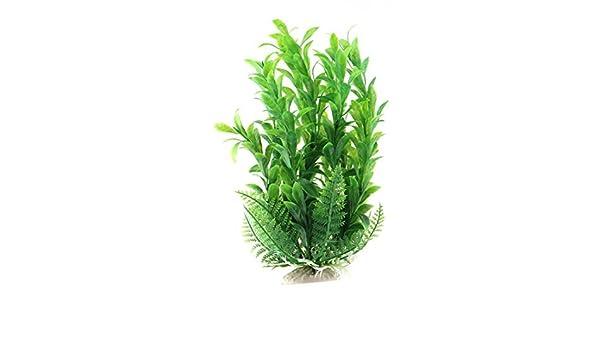 Amazon.com : eDealMax Planta acuario de plástico pecera Artificial Decoración Simulación de agua Verde del ornamento : Pet Supplies