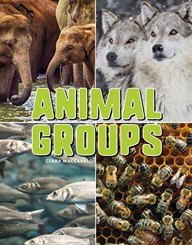 Group Animals - Animal Groups (Science Alliance)
