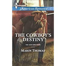 The Cowboy's Destiny (The Cash Brothers Book 4)