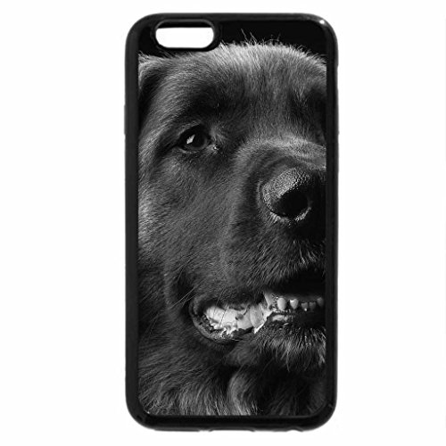 iPhone 6S Case, iPhone 6 Case (Black & White) - Nice dog