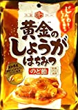 アサヒグループ食品 黄金のしょうがはちみつのど飴 80g ×6袋