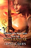 Bargain eBook - Chief Radvar
