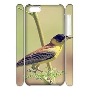 3D Animal 06 IPhone 5C Case, Shock Absorb Case Apple Iphone 5c Case Luxury Okaycosama {White}