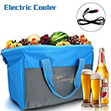 Causalyg 20-Can Soft Electric Cooler & Warmer Bag Insulated Picnic Lunch Bag, 12V DC Portable Fridge Refrigerator, Travel Cooler Bag For Car, Baby Bottles, Beach, Camping, Hiking - 18L Capacity