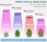 King Plus New Model 1000w LED Grow Light Double