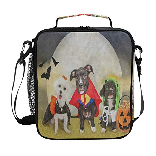 (Hipster Puppy Dog Dressed In Halloween Costumes Lunch Bag Womens Insulated Lunch Tote Containers Zipper Square Lunch Box for Kids)
