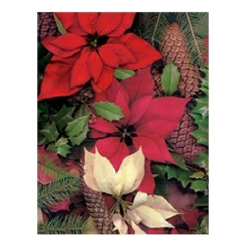 Springbok Poinsettias and Pine Cones 500 Piece Jigsaw Puzzle by Springbok