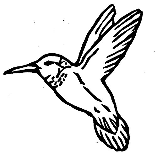 Hummingbird Rubber Stamps custom stamps rubber Rubber Stamps custom stamps rubber