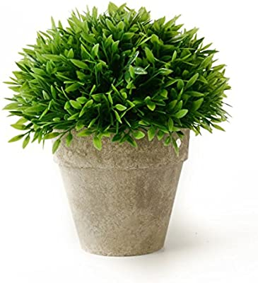 Small plant for office desk Air Purifying Amazoncom Kumii Small Artificial Topiary Plant In Pot For Office Desk Bathroom Kitchen Home Decor green Grass Jovemaprendizclub Amazoncom Kumii Small Artificial Topiary Plant In Pot For Office