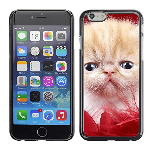 """Premio Sottile Slim Cassa Custodia Case Cover Shell // V00003731 amour précieux // Apple iPhone 6 6S 6G 4.7"""""""