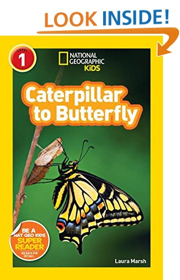 Elementary School Books: Amazon.com