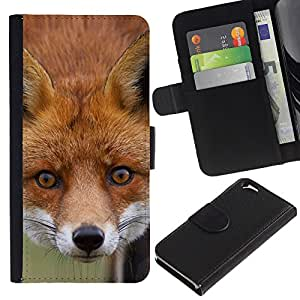 All Phone Most Case / Oferta Especial Cáscara Funda de cuero Monedero Cubierta de proteccion Caso / Wallet Case for Apple Iphone 6 // Fox Animal Art Fairytale Forest Red Face