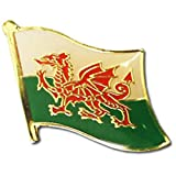 "Wales Flag Backpack/Hat Pin / Red Dragon National Symbol for hats, backpacks, and suit jacket lapels (Welsh pin, 0.75"" x 0.75"")"