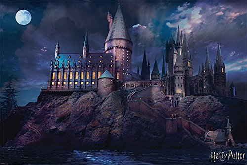Harry Potter - Movie Poster Print (Hogwarts By Night) (Size: 36