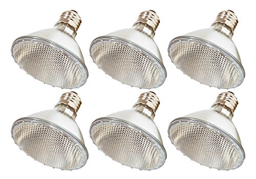 (Pack Of 6) 60PAR30/FL 120V - 60 Watt High Output (75W Replacement) PAR30 Flood Short Neck - 120 Volt Halogen Light Bulbs - 50w Par30 Halogen Spot