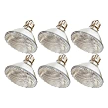 (Pack Of 6) 60PAR30/FL 120V - 60 Watt High Output (75W Replacement) PAR30 Flood Short Neck - 120 Volt Halogen Light Bulbs