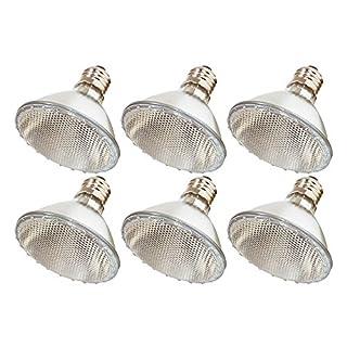 (Pack Of 6) 60PAR30/FL 120V - 60 Watt High Output (75W Replacement) PAR30 Flood Short Neck - 120 Volt Halogen Light Bulbs