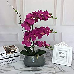 Large Lifelike Silk Orchid with Decorative Ceramic Vase,Vivid Artificial Flower Arrangement,Potted Orchid Plant,Fuchsia
