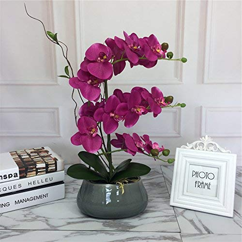 - Large Lifelike Silk Orchid with Decorative Ceramic Grey Vase Vivid Artificial Flower Arrangement Potted Orchid Plant, Fuchsia