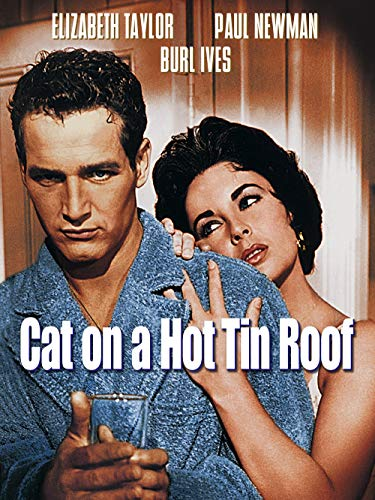 Which are the best cat on a hot tin roof available in 2020?