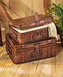 Set of 2 Indoor Outdoor Multi Use Metal Trunk Cases Storage (Bronze)