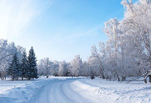 Yeele 6x4フィート 冬の風景 写真 背景 氷 霜 ブッシュ 木 森 白 雪 道路 背景 メリークリスマス ハッピーニューイヤー パーティー バナー デコレーション スタジオ小道具   B07G6NVF95